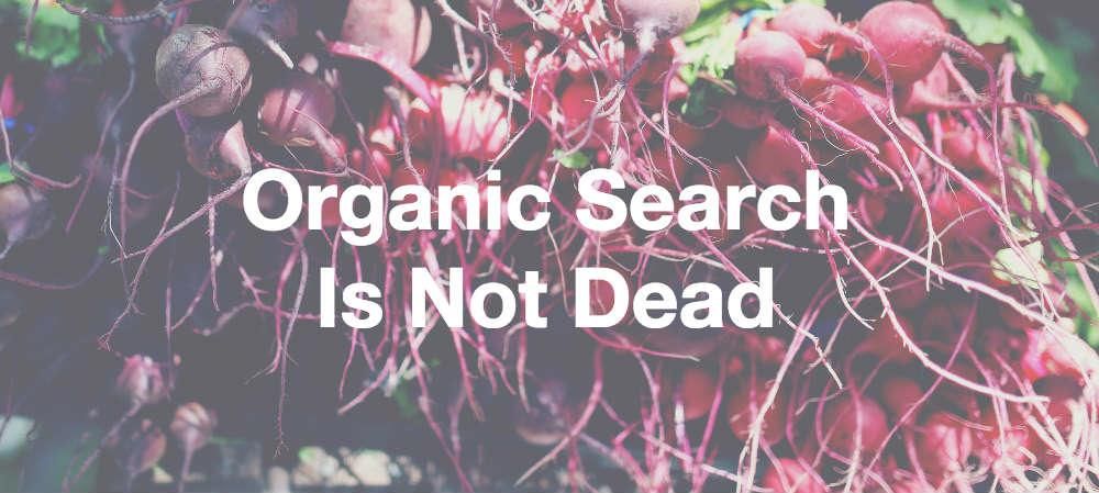 Organic Search Is Not Dead