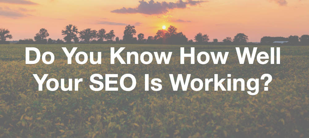 Do You Know How Well Your SEO is Working?